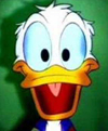 Donald-duck-orgasm