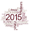 Voeux-2015