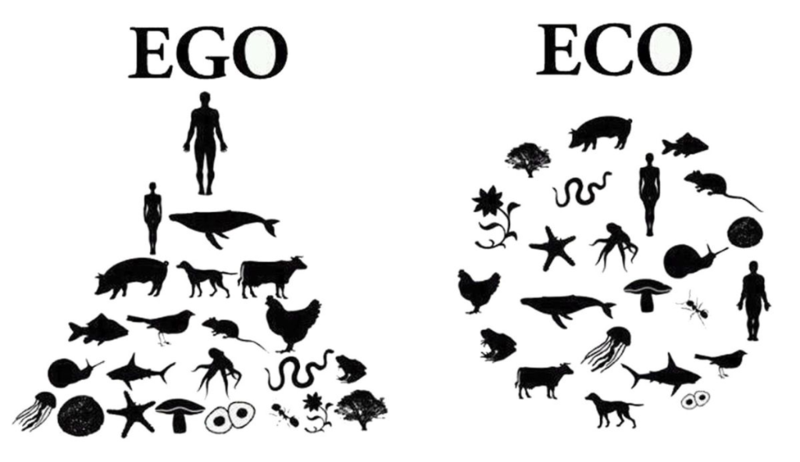 Eco-égo-leadership
